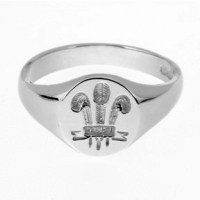 Small Welsh Feathers Signet Ring SAH5-S