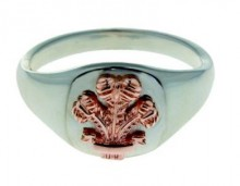 Welsh Feathers Signet Ring SAH15SR