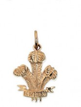 Welsh Feathers Charm POW4C