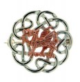 Silver/Rose Gold Dragon BroochCBR1SR