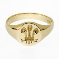 Small Welsh Feathers Signet Ring SAH5